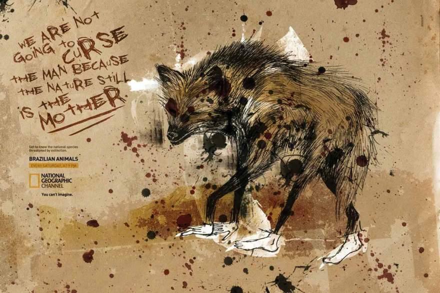 natgeo-ilustra-wolf